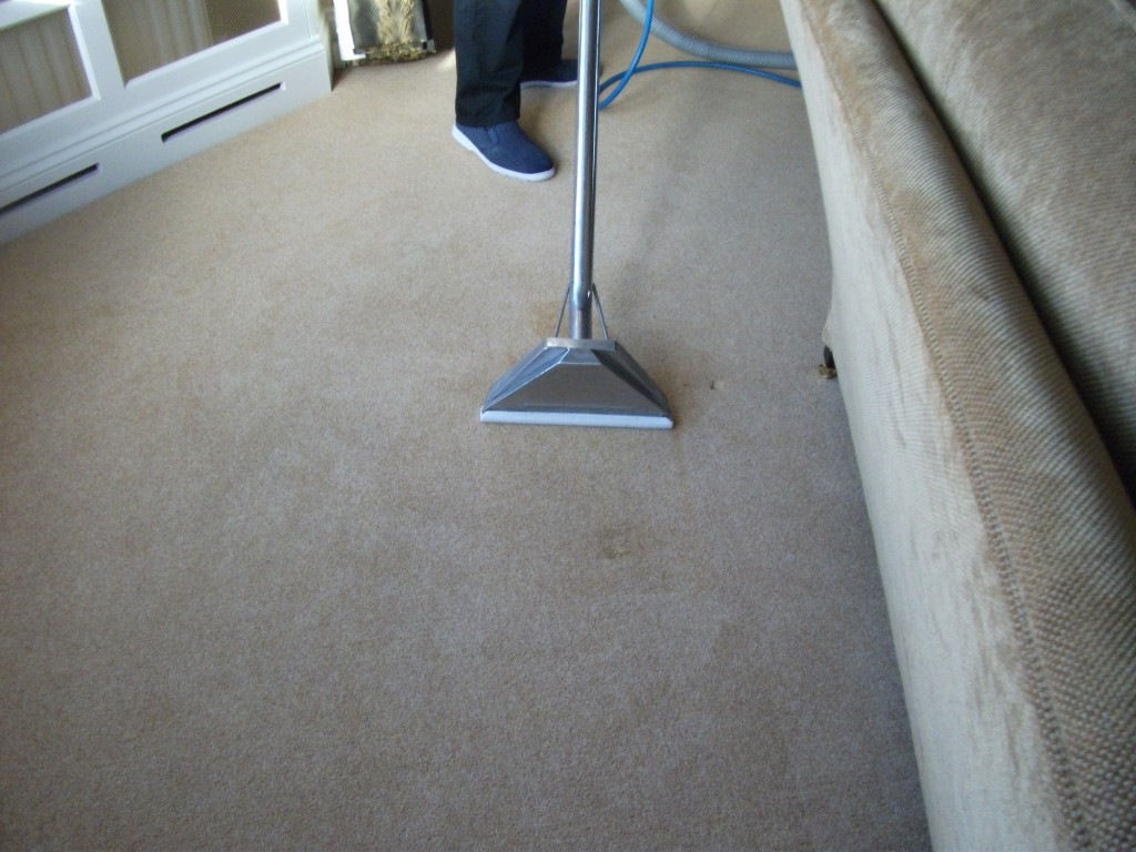 professional carpet cleaner in Bedfordshire