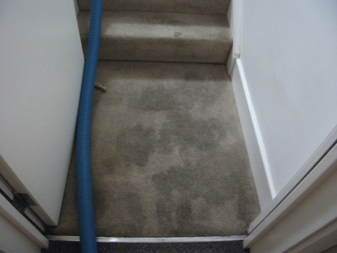home-staircase-entrance-carpet-cleaning-customer-bedfordshire-before
