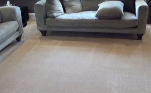 Professional Carpet Cleaners in Bedfordshire Carpet