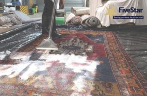 Rug Cleaning Rinse from www.fivestarfurnishingcare.co.uk